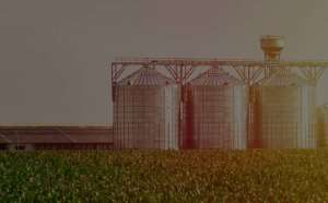 Agronegócio - Assessoria e Consultoria Jurídica
