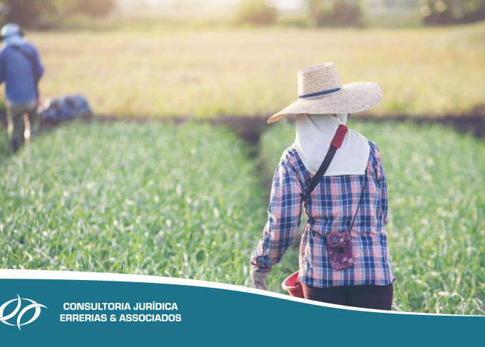 Contribuição Sindical Rural: Empresário ou Produtor Rural, com ou sem funcionários, são obrigados a pagar?